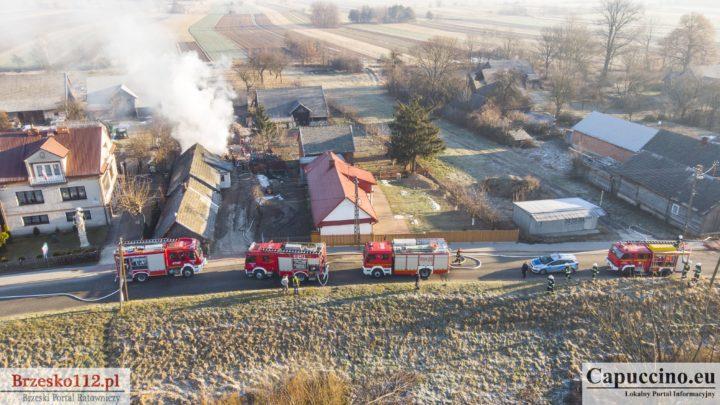 Pożar budynku gospodarczego w Borzęcinie [ZDJĘCIA]