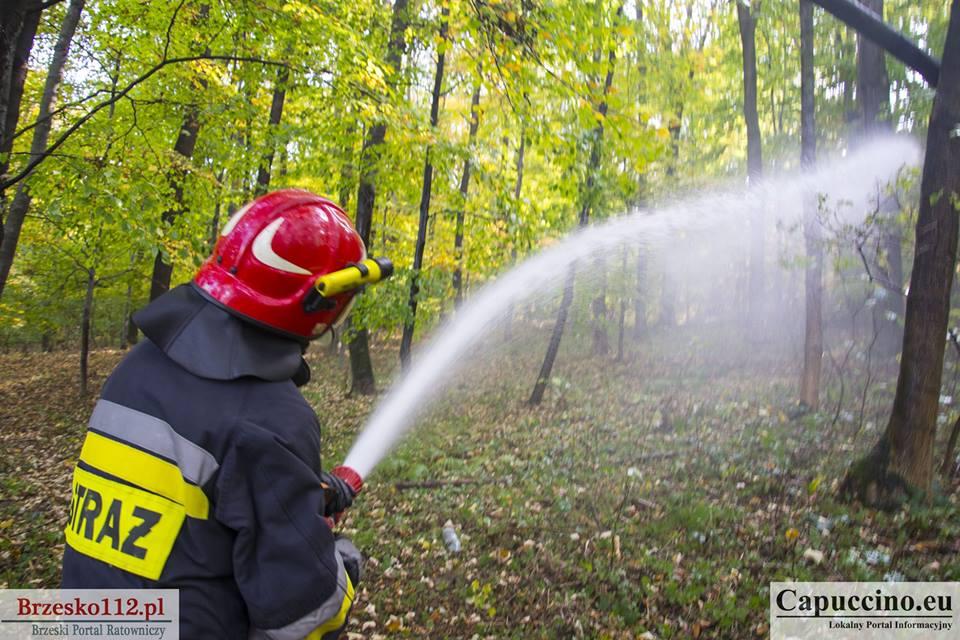 Informacja dotycząca szkolenia dla strażaków ratowników OSP