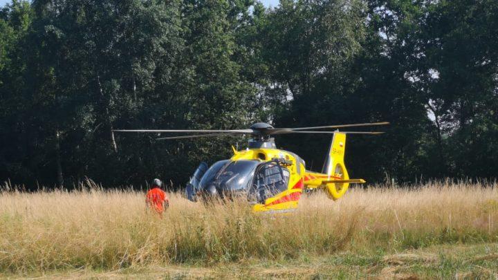 Pożar traw i akcja Lotniczego Pogotowia Ratunkowego w Borzęcinie [FOTO, WIDEO]